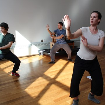 Classical Qigong for Total Health, Emotional Balance and Spiritual Clarity