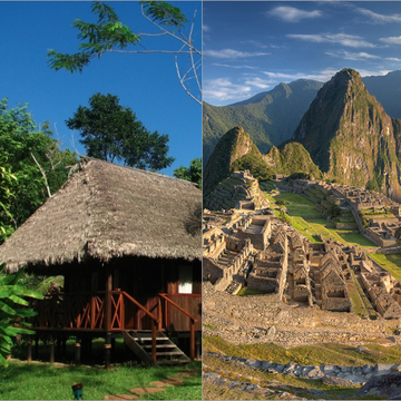 Amazon and Machu Picchu Ayahuasca and San Pedro Retreat