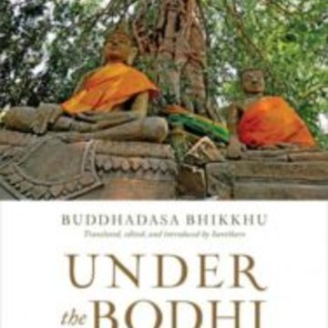 "Exploring Dependent Co-arising as Presented in ""Under the Bodhi Tree"""