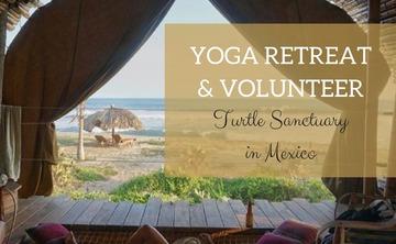 6 Days All Inclusive Yoga & Volunteer Turtle Sanctuary Retreat