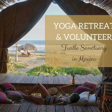 6 Days All Inclusive Yoga & Volunteer Turtle Sanctuary Retreat