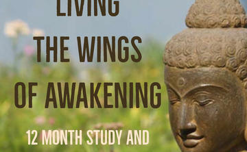 LIVING THE WINGS OF AWAKENING: A Deep Dive