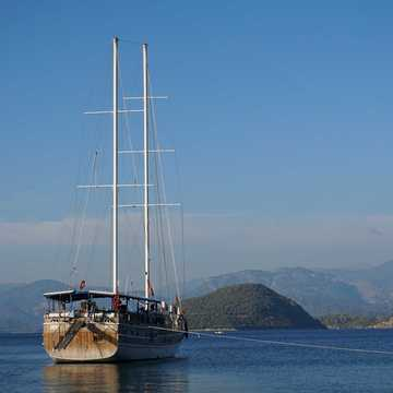 Seaborn Legend gullet