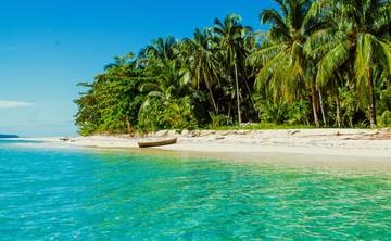 City to Sea: A Soulful Panama Yoga Retreat
