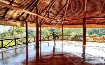 8 Days Ultimate Wellness Yoga Retreat in Costa Rica