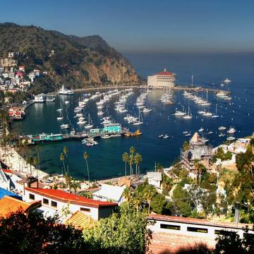 Santa Catalina Island Yoga Retreat