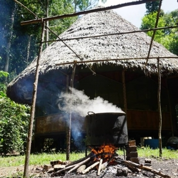 11 day Ayahuasca Retreat