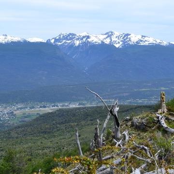 Awake in the Wild, Patagonia, Argentina