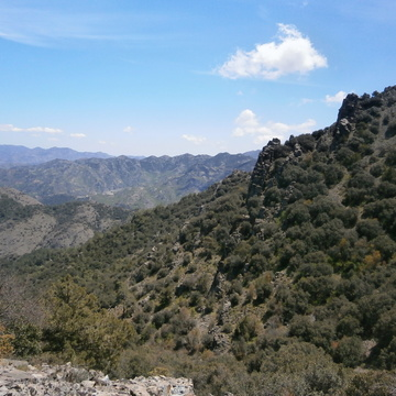 Discover Mindfulness in Nature in Cyprus