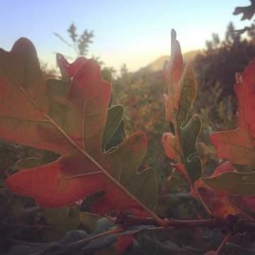 Autumn Equinox Hike