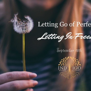 Letting Go of Perfection. Letting in Freedom