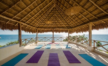 Wild Immersion 200hr Yoga Teacher Training - 21 Days - Isla Mujeres - Mexico