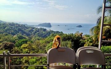 Hot Yoga Teacher Training (YA - RYT): 250 hrs, Costa Rica