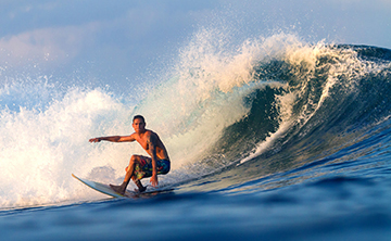 ONLINE COURSE   Surfing in the Sea of Change