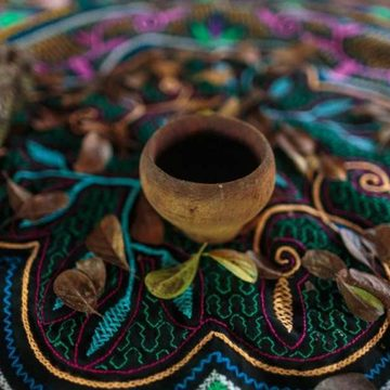 Ayahuasca Sacred Plant Medicine Retreat