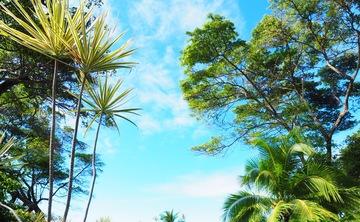 Bethany Lee Yoga and Wellness Retreat Panama