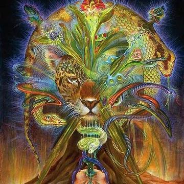 Ayahuasca Retreat: Remember who you are
