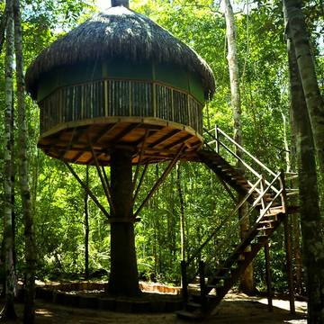 One Week Ayahuasca Retreat