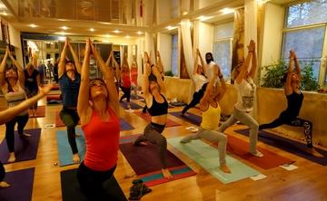 Holistic Yoga Teacher Training Goa, India