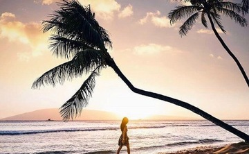 Hawaii Luxury Retreat