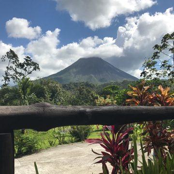 Rainforest Yoga Retreat with Mitch Coleman