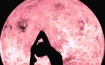 Heart Thread Yoga's 200 hour Yoga Alliance certified training