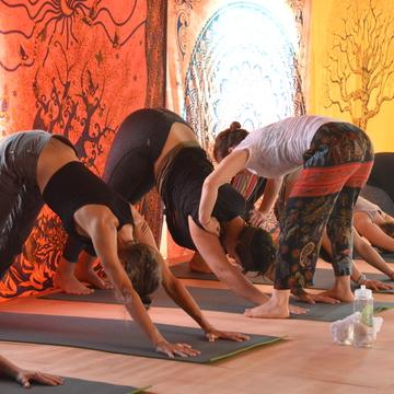 8-Day Ayahuasca Healing Retreat (Jan. 19-26)