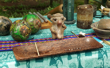 8-Day Ayahuasca Healing Retreat (Feb. 16-23)
