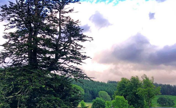Magic, Medicine & Myth in Scotland