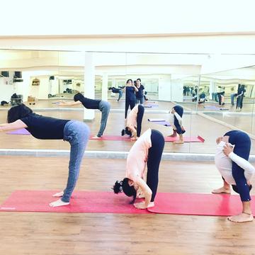 Daily Yoga Classes Studio in Delhi