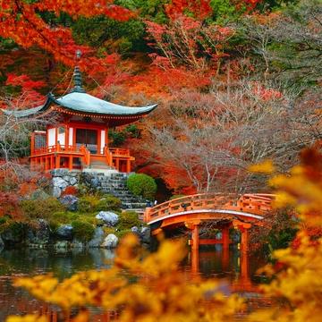 7 Day Sacred Mythic Journey Mount Fuji, Japan
