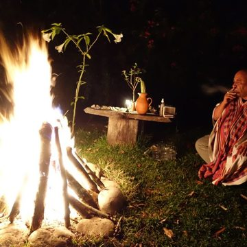 3 month ayahuasca and plant dieta immersion