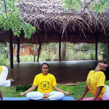 9 days Hatha yoga sessions nestled in the nature