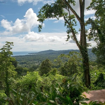 Escape to Costa Rica!