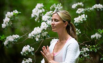 Weeklong Raja Yoga Immersion