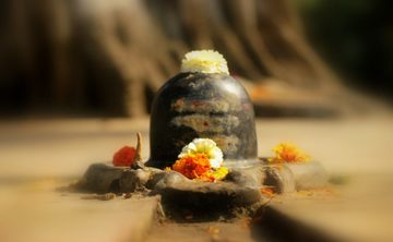 10 days spiritual yoga and naturopathy retreat and tour.