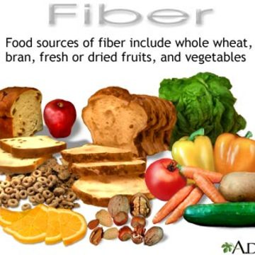 The truth about FIBER 6:30pm-8pm