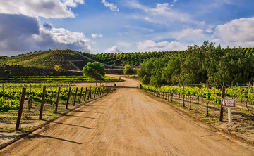Southern California Winery Retreat