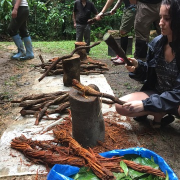 11-Day Ayahuasca Retreat