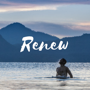 Renew Wellness Package