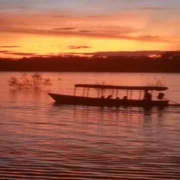 14 day Ayahuasca Retreat