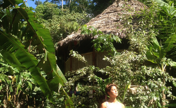 10 Day Ayahuasca & Yoga Immersion ( Jan 17 - 27 2019)