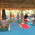 Vrinda School of yoga