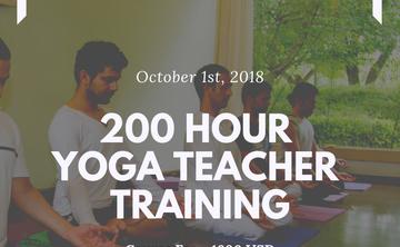 200 Hour Multi Style Yoga Teacher Training Course Rishikesh India
