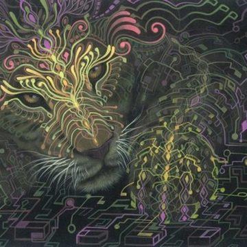 Ayahuasca & Meditation Retreat