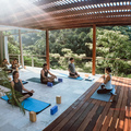 Yoga Retreats & Co.