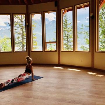 Staying Awake – A Day of Yoga with Trisha Wilson & Karuna Erickson