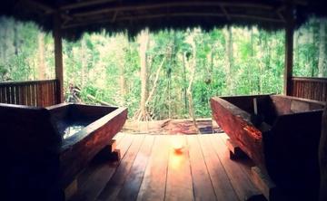 Ayahuasca Retreat 8-day