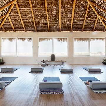 Yin & Restorative 9 Day