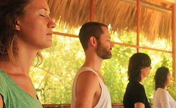 Hridaya Yoga Retreat: Module 3
